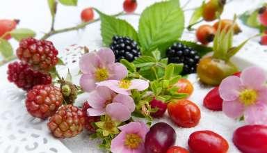 Dieta per il diabete - Frutti di bosco