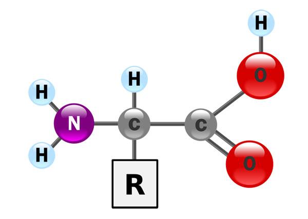 aminoacido-formula-generale