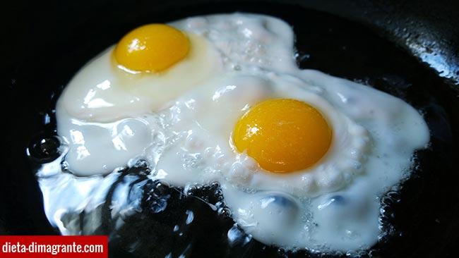 Fabbisogno alimentare di proteine